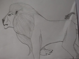 my picture of a lion
